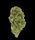 Fleur CBD Cannatonic